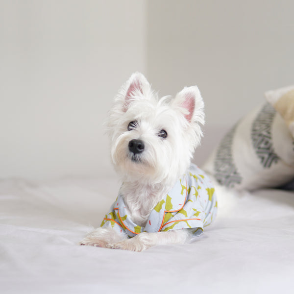 Floral Cotton Pajamas Shirt, Dog Shirt, Ohpopdog