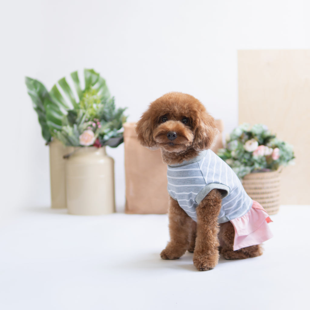 Grey White Pink Dress Top, Dog Dress Top, Ohpopdog