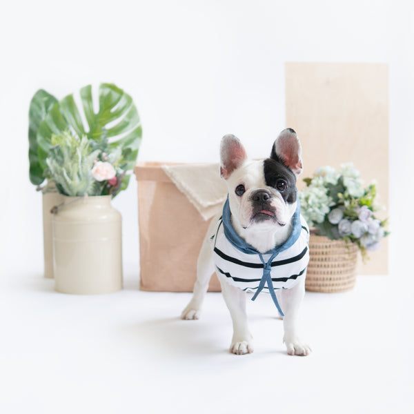 Blue Linen Striped Hoodie - Ohpopdog