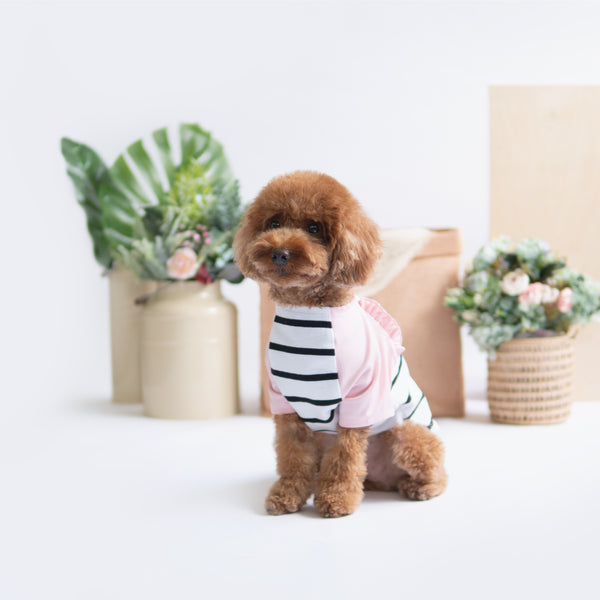 Pink Striped Raglan, Dog Tshirt, Ohpopdog