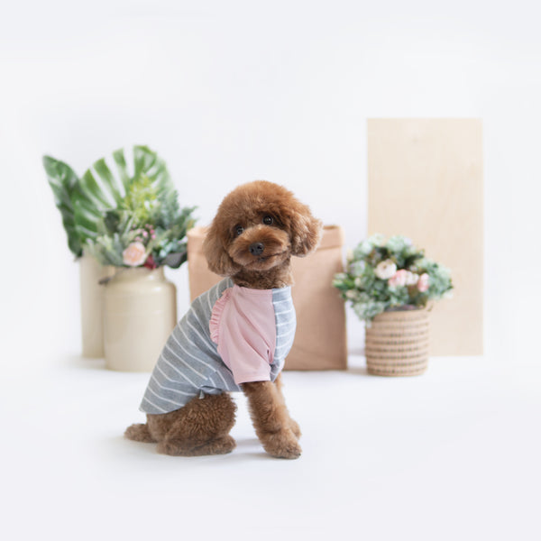 Pink Grey Striped Raglan, Dog Tshirt, Ohpopdog