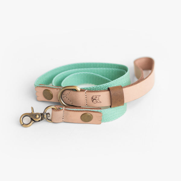 Mint Green Hemp Leather Leash, Dog Leash, Ohpopdog