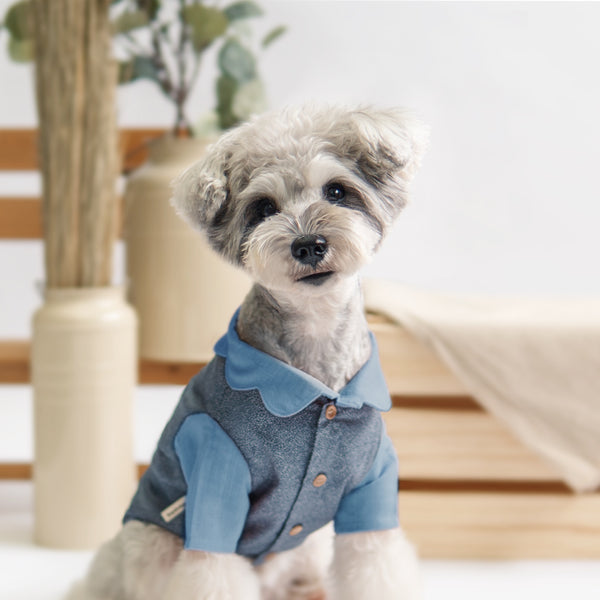 Blue Scallop Polka Dot Shirt, Dog Shirt, Ohpopdog