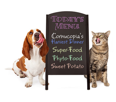 Doc Broderick's Feeding Paradigm For Big Dogs