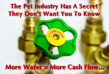 Pet Food Companies Use Water To Make Cash