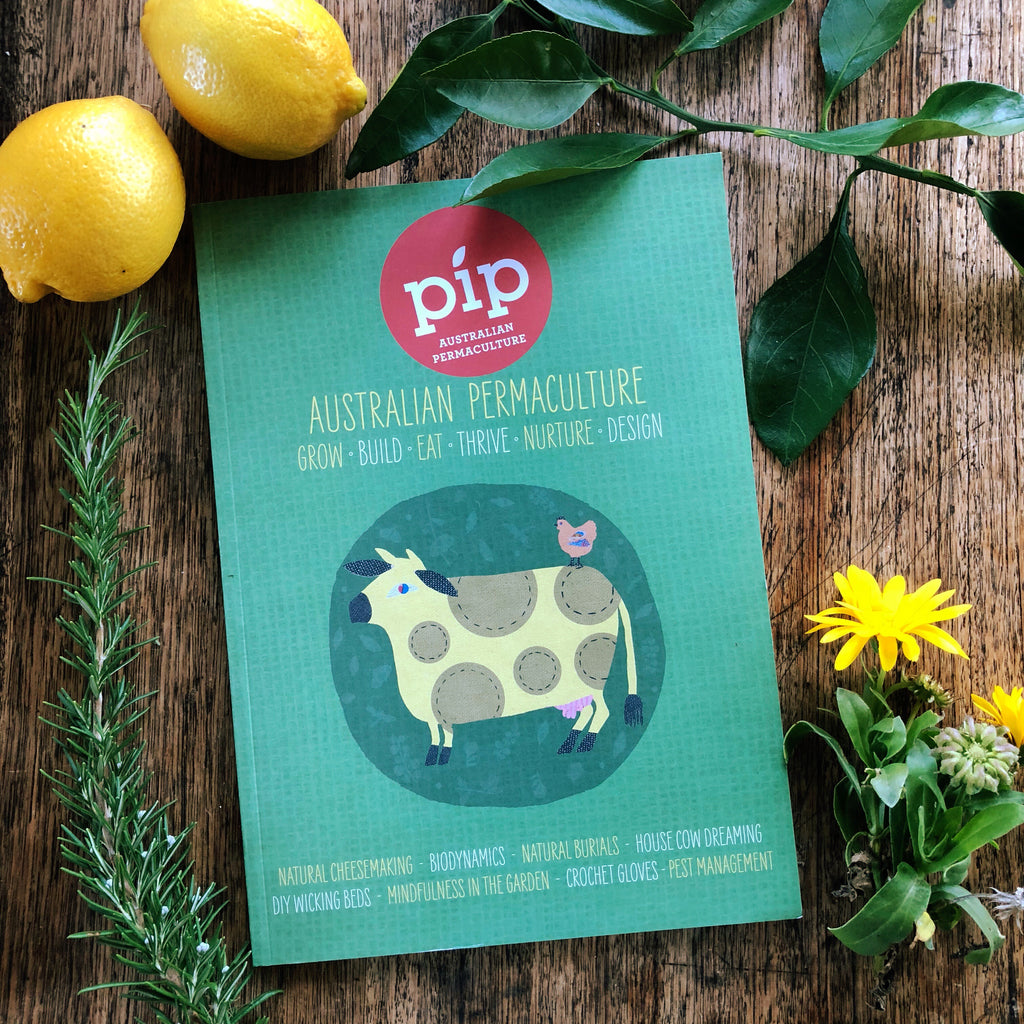 Pip Australian Permaculture Magazine - Issue 11