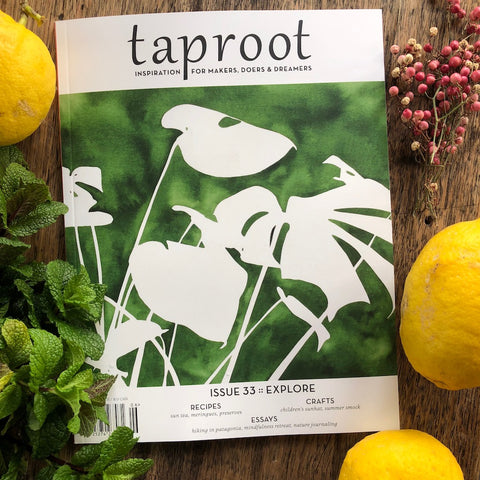 Taproot: Issue 33:: EXPLORE