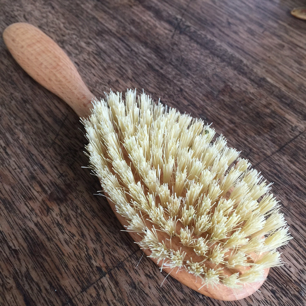 Bristle Brush - Plant Fibre