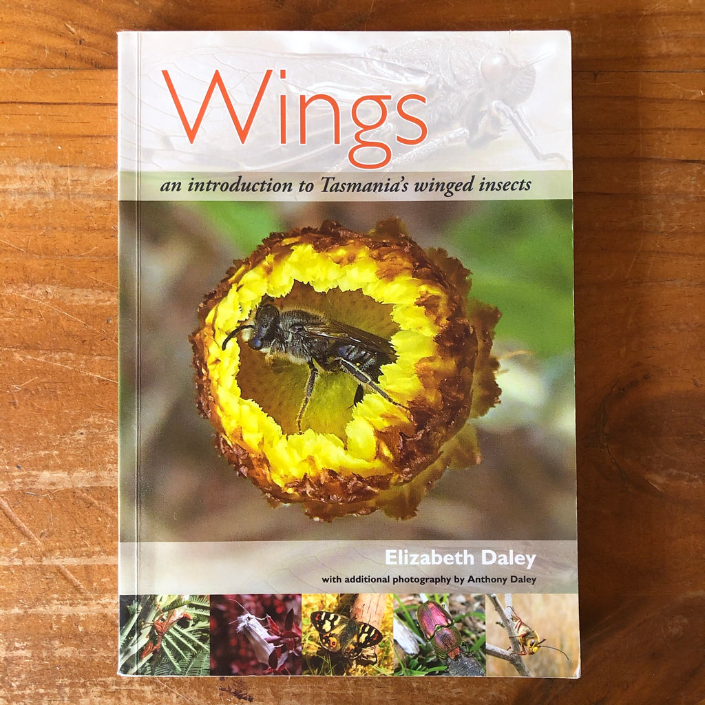 Wings - An introduction to Tasmania's winged insects *pre-loved*
