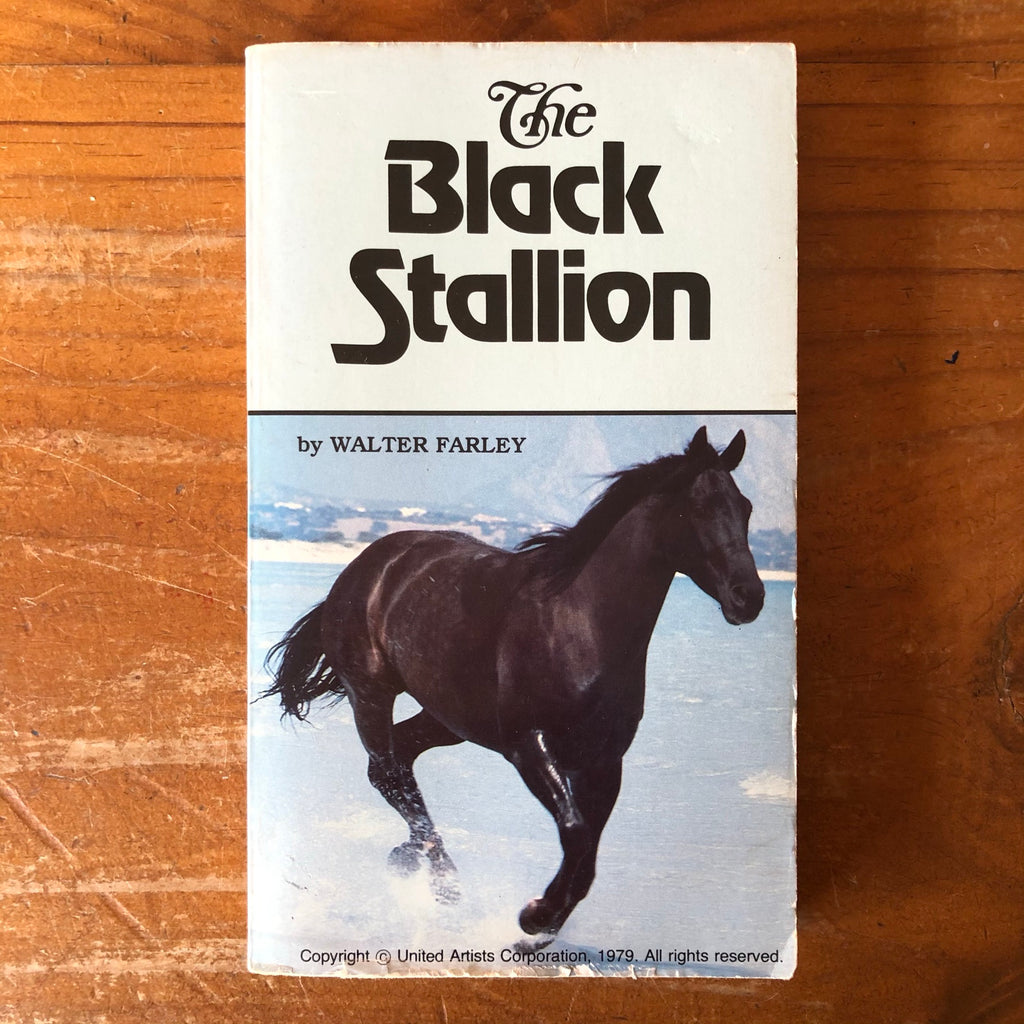 The Black Stallion *pre-loved*