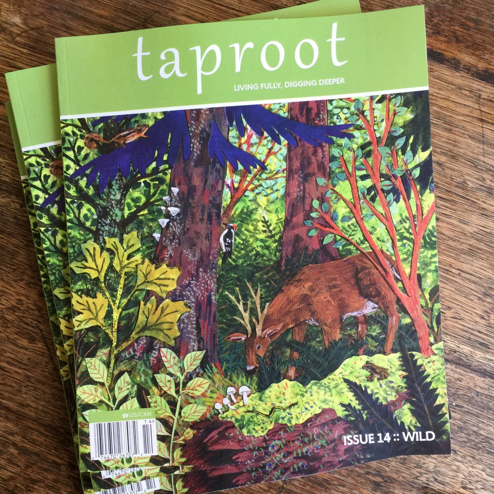 Taproot: Issue 14: Wild