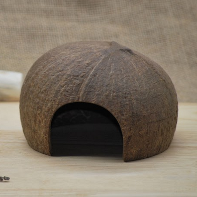 Coconut Play House