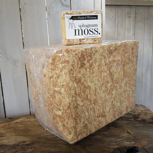Super Big Dry 3kg Sphagnum Moss and 100gm Dry DIY Moss Brick DIY