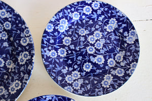Vintage Blue and White Porcelain Plates, Willowwae style