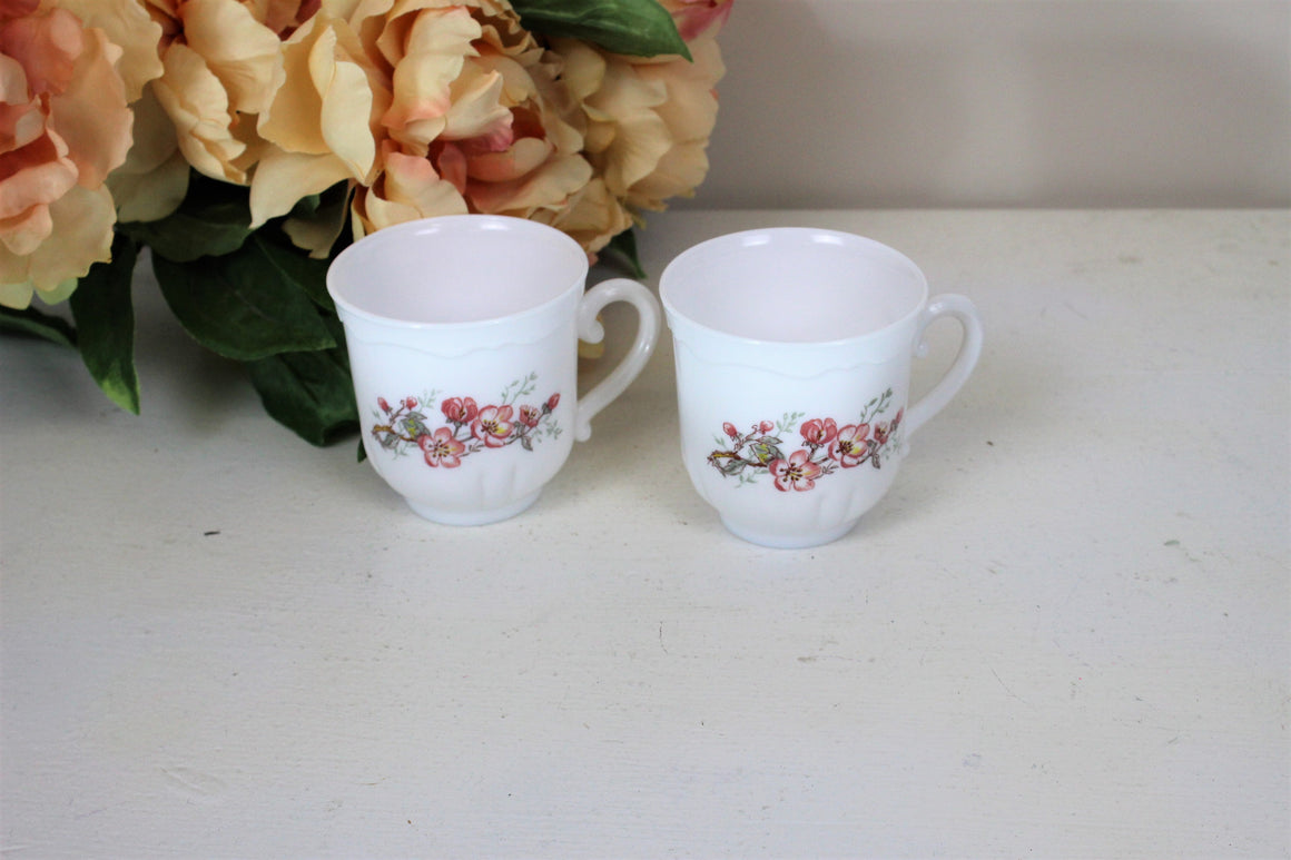 Vintage 1960s Tea or Coffee Cups By Florentine Arcopal France