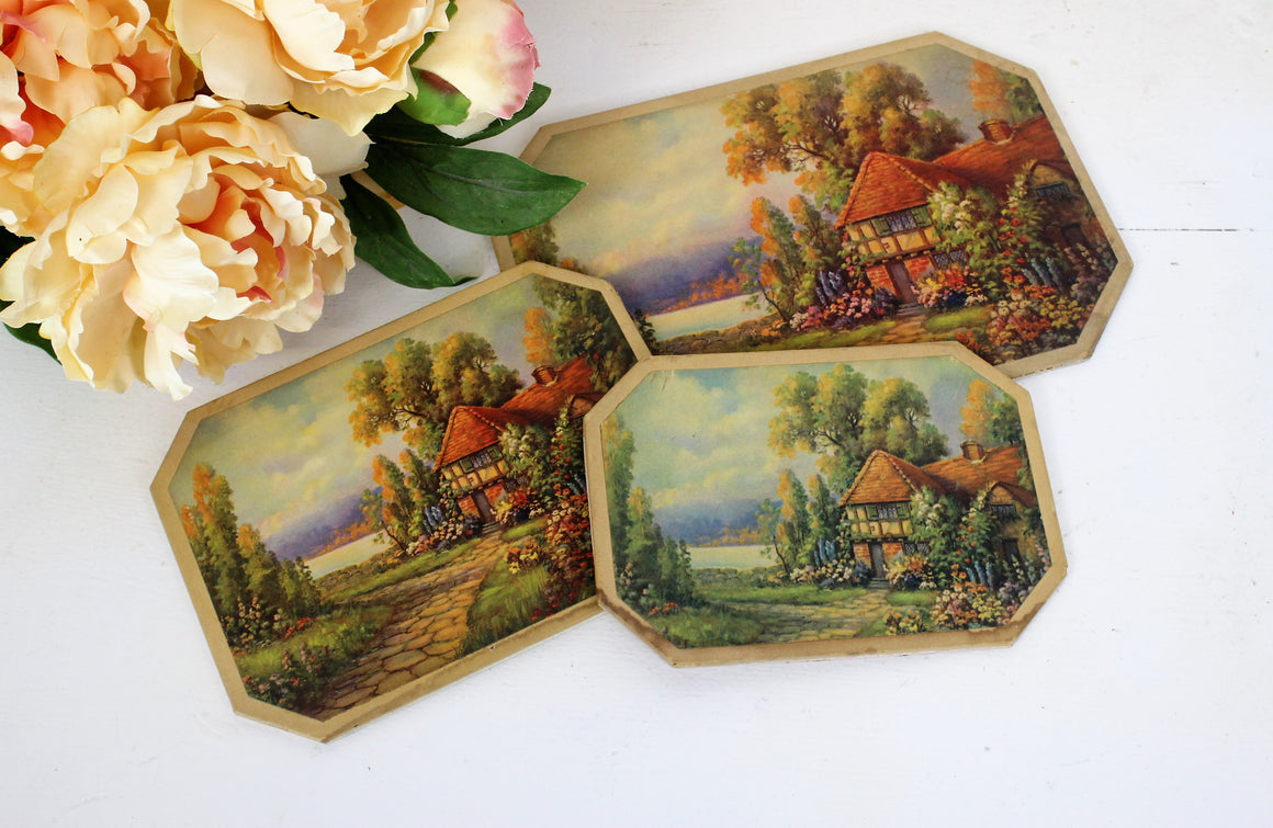 Vintage 1960s 1970s Prints on Wood English Cottage Country Life, Table Protector