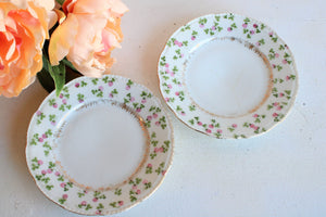 Vintage 1910s Beyer and Beck Royal Rudolstadt Bread Plates