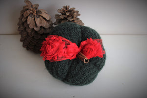 Green and Red Christmas Theme Knit Pumpkin PIllow Pouf, Cinnamon Stick Stem