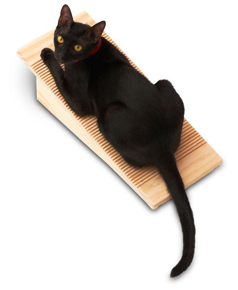 CatScratching Board