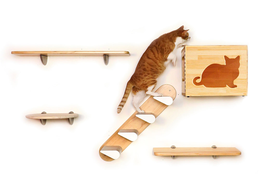 CatsClimber 5-piece Starter Kit (components available individually also)
