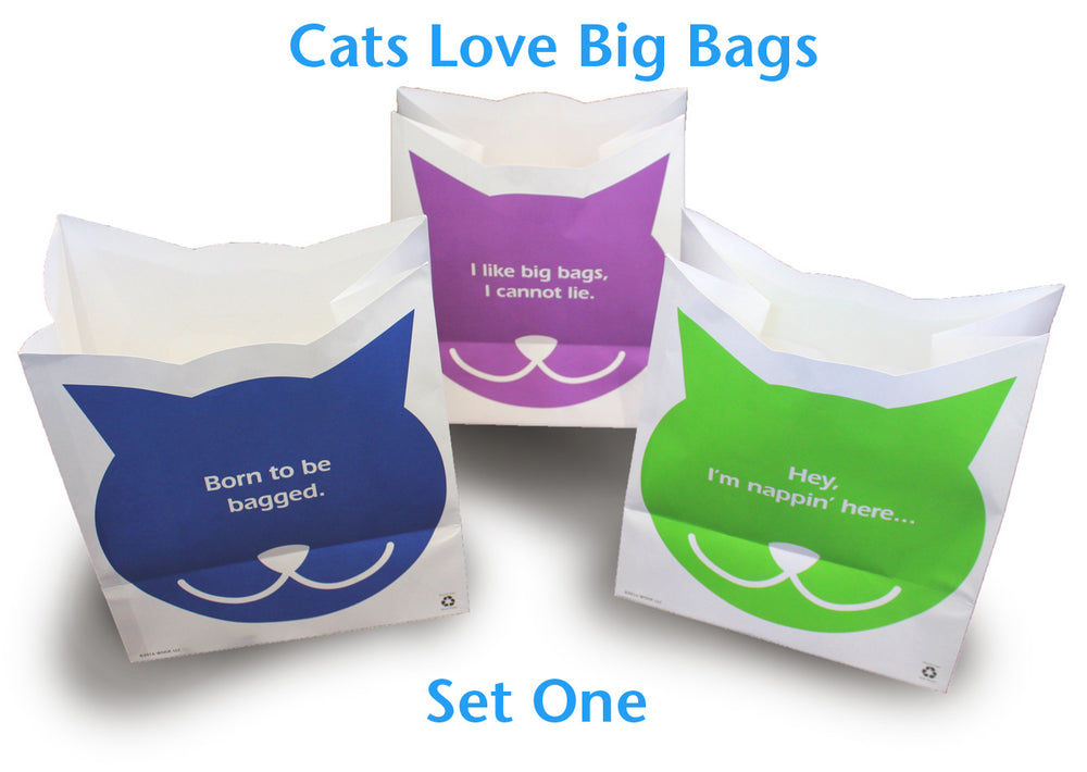 Cats Love Big Bags!