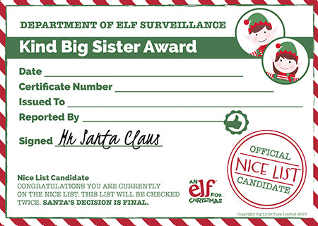 Christmas Reward Chart Printable Certificate – Official Certificate Template