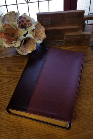 Every Man's Bible NLT, Large Print, TuTone Brown