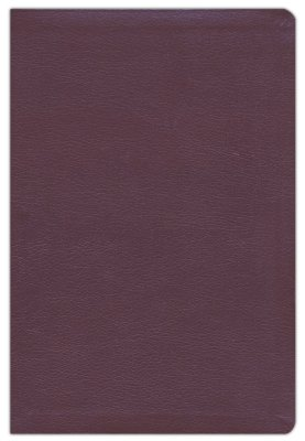 NIV Thinline Reference Bible/Large Print (Comfort Print)-Burgundy Bonded Leather