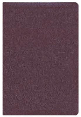 NIV Thinline Reference Bible Large Print Burgundy Bonded Leather
