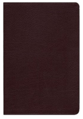 KJV Life in the Spirit Study Bible Bonded Leather Burgundy Indexed