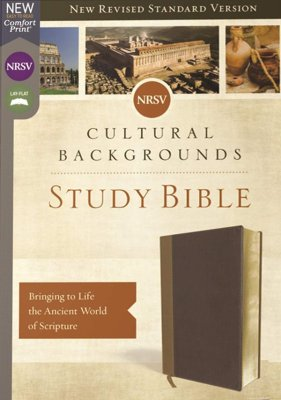 NRSV Cultural Backgrounds Study Bible (Comfort Print)-Tan/Brown Leathersoft