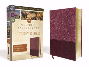 NRSV Cultural Backgrounds Study Bible (Comfort Print) - Burgundy Leathersoft