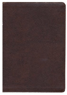 KJV Study Bible Full-Color Edition Bonded Leather Brown Indexed