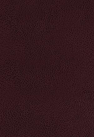 KJV Large Print Study Bible Full-Color Edition Bonded Leather Burgundy Indexed