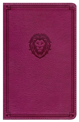NKJV Thinline Bible/Youth Edition (Comfort Print)-Berry Leathersoft