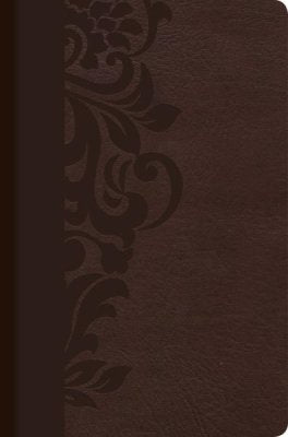 Spanish Biblia de Estudio para Mujeres RVR 1960 Simil Piel Cafe Study Bible for Women Brown Indexed