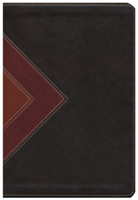 NLT Illustrated Study Bible - Brown