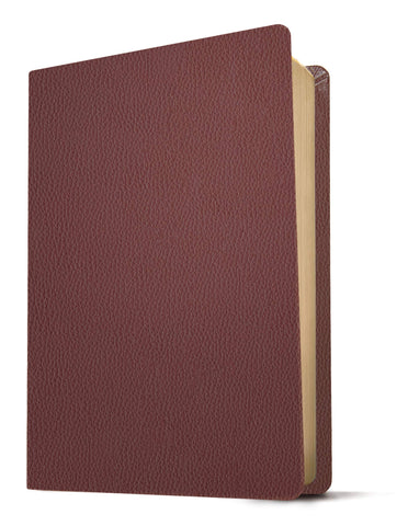 KJV Giant-Print Personal-Size Bible, Filament Enabled Edition--genuine leather, burgundy