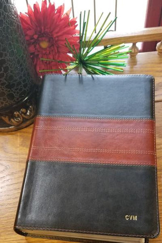 ESV Personal Reference Bible-Deep Brown/Tan Trail Design TruTone
