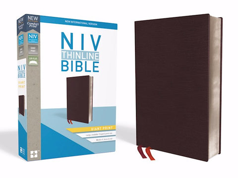 NIV Thinline Bible/Giant Print (Comfort Print)-Burgundy Bonded Leather Indexed
