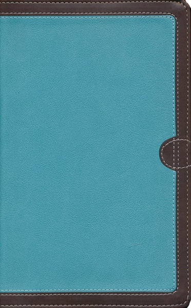 NIV Thinline Bible Turquoise/Chocolate