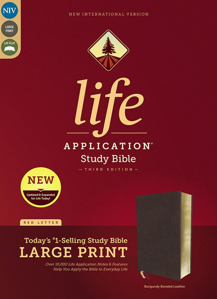 NIV Life Application Study Bible/Large Print (Third Edition)-Burgundy Bonded Leather Indexed