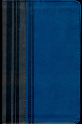 NIV Teen Study Bible Leather Like Graphite/Mediterranean Blue