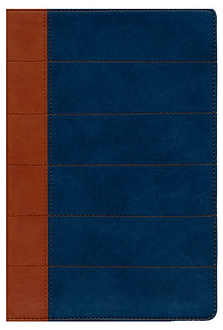 Spanish-RVR 1960 Thompson Study Bible-Blue/Tan DuoTone