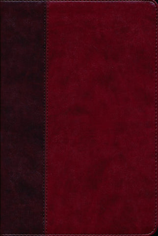 ESV Story of Redemption Study Bible -Burgundy