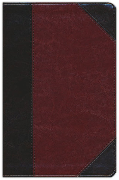 ESV Student Study Bible-Brown/Cordovan Portfolio Design TruTone