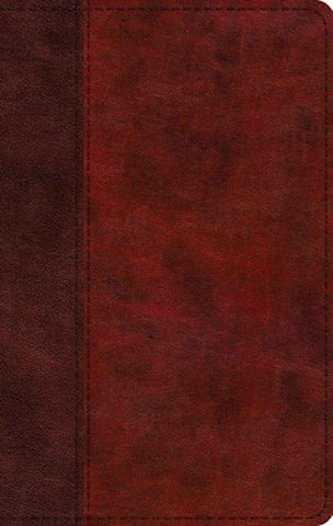 ESV Large Print Thinline Bible-Burgundy Red Timeless Design