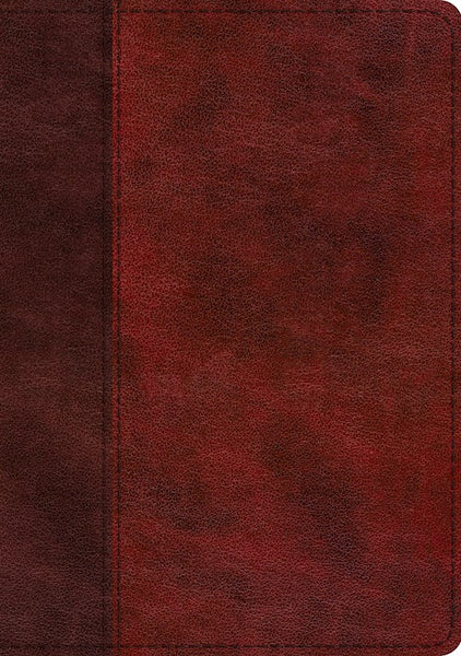 ESV Single Column Journaling Bible/Large Print-Burgundy/Red Timeless Design-TruTone