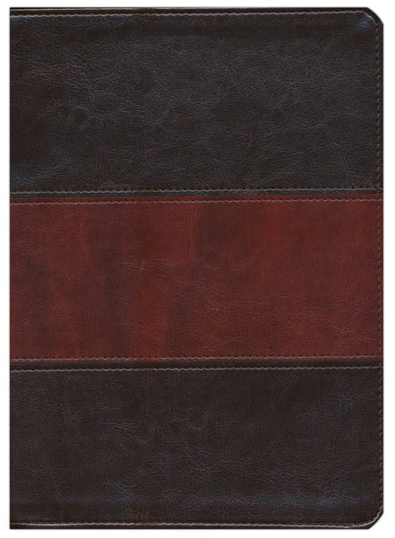 KJV Study Bible (Full-Color)-Saddle Brown LeatherTouch