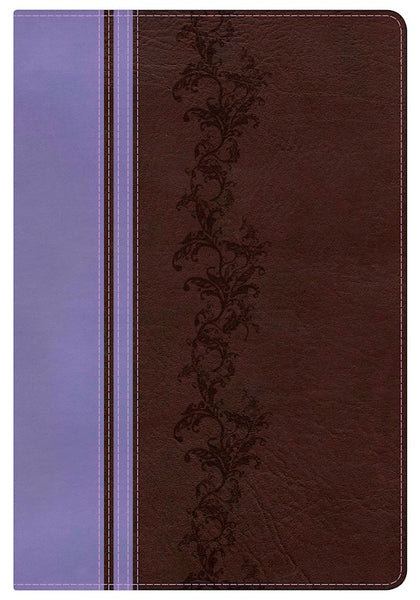 KJV Holman Rainbow Study Bible-Brown/Lavender LeatherTouch Indexed